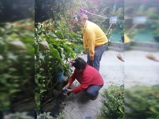 Personal de la brigada 261 de ecología realiza fumigaciones en Puruándiro