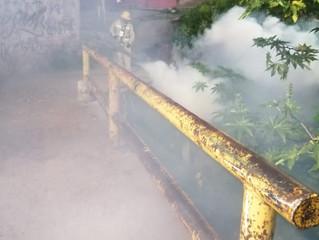 Van más de 800 mil acciones de saneamiento básico contra el dengue, zika y chikungunya