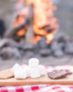 campfire-smores-Vert.jpg