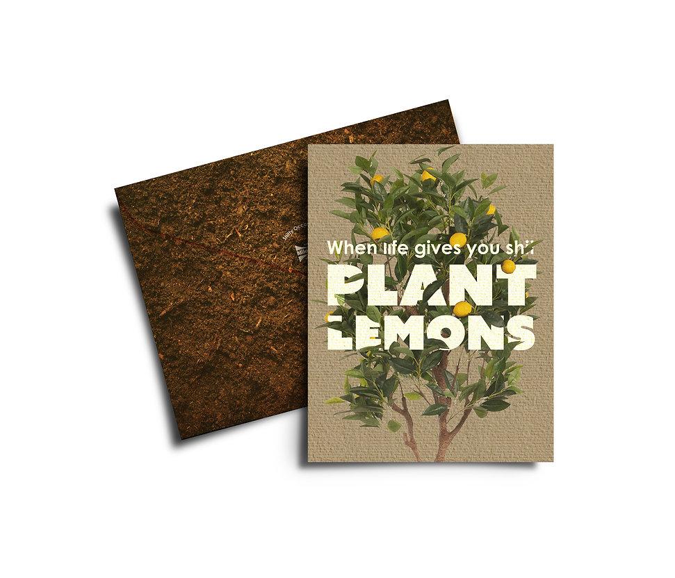 Milorganite Fertilizer Ellen McMahon Copywriting Advertising Campaign Copywriter Shitty Occasion Cards