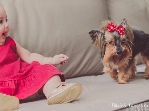 Ensaio fotográfico de Natal de bebê em Curitiba [Estella] 6 meses | Em casa