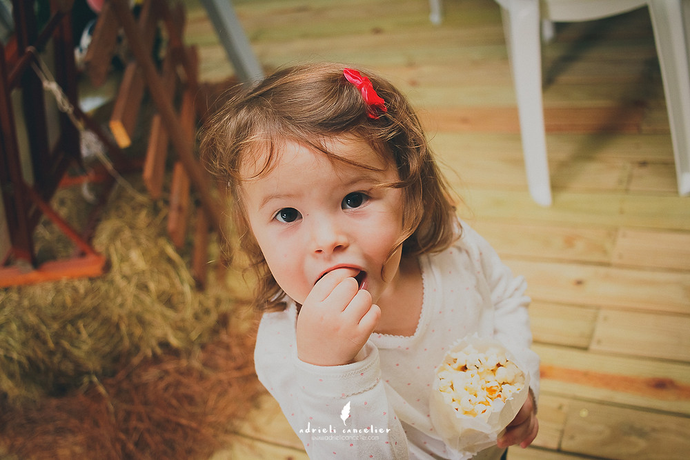 festa infantil de 2 anos da Olivia em Curitiba na Vila dos Animais