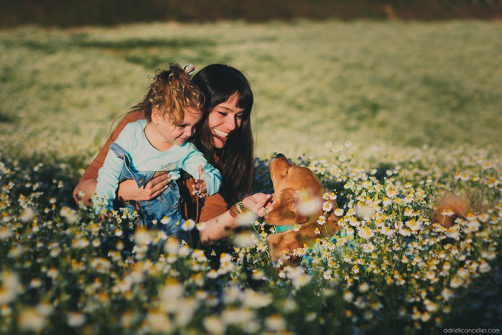 fotografia de família em Curitiba por Adrieli Cancelier | ensaio fotográfico de família em Curitiba | fotos com cachorro