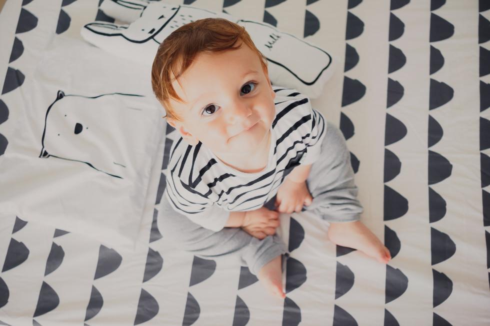 book de bebe acompanhamento mensal de bebê