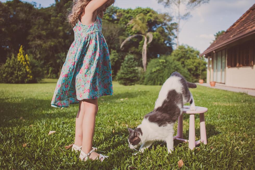 ensaio-fotografico-pets-curitiba