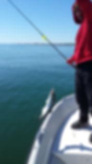 Jake & Harbor Blue.jpg
