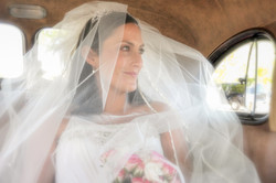 Wedding 295-002