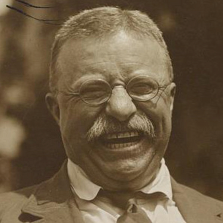 Theodore Roosevelt: The Master of American Manliness