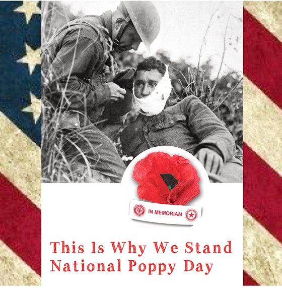 This Is Why We Stand: National Poppy Day
