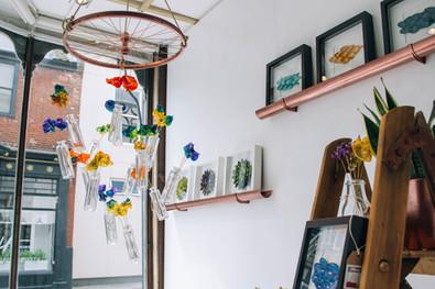 Norwich Art Shop Window Display