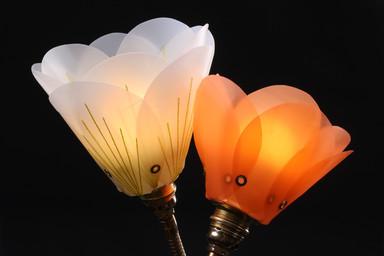 Pint Lights