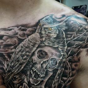 skullowl.jpg