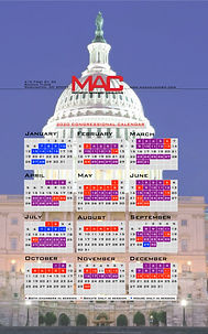 MAC 2020 Wallpaper.001.jpeg
