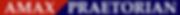 AP Logo3.png