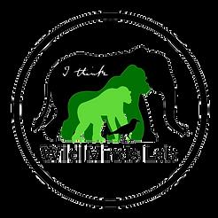Wild Minds Lab Logo