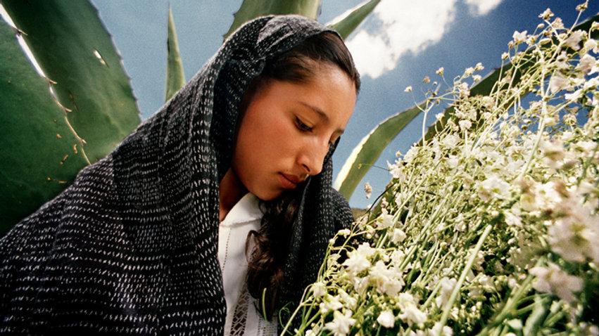 Vendedora de flores. Apan, Hidalgo.