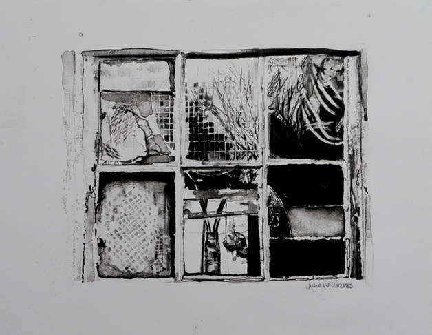 The Shed Window