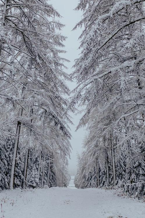 Print Sneeuw_10