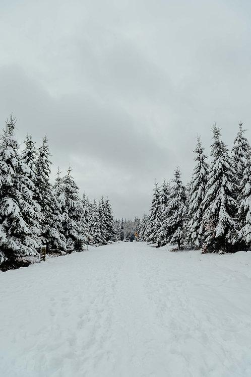 Print Sneeuw_17