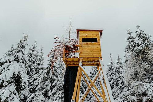 Print Sneeuw_3