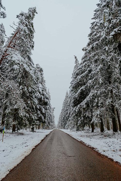 Print Sneeuw_14