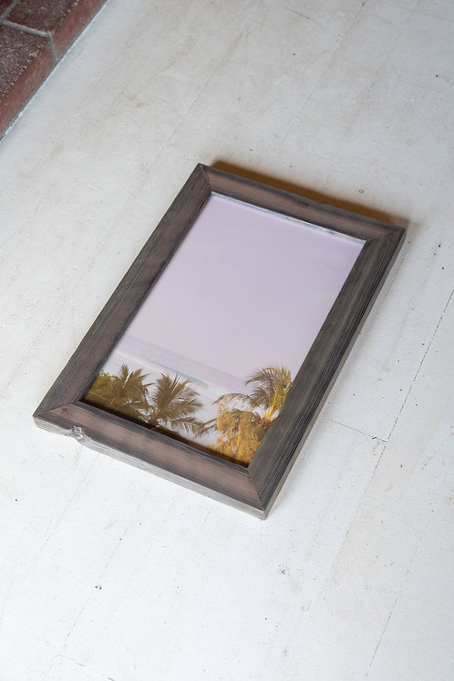 Contrasted Tropics framed print -  #1 13 x 19