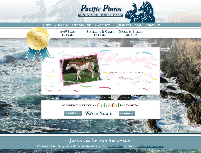 Pacific Pintos