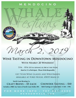 2019 Whale Festival Poster