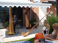 Harfe und Alphorn