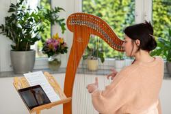 Harfe online lernen