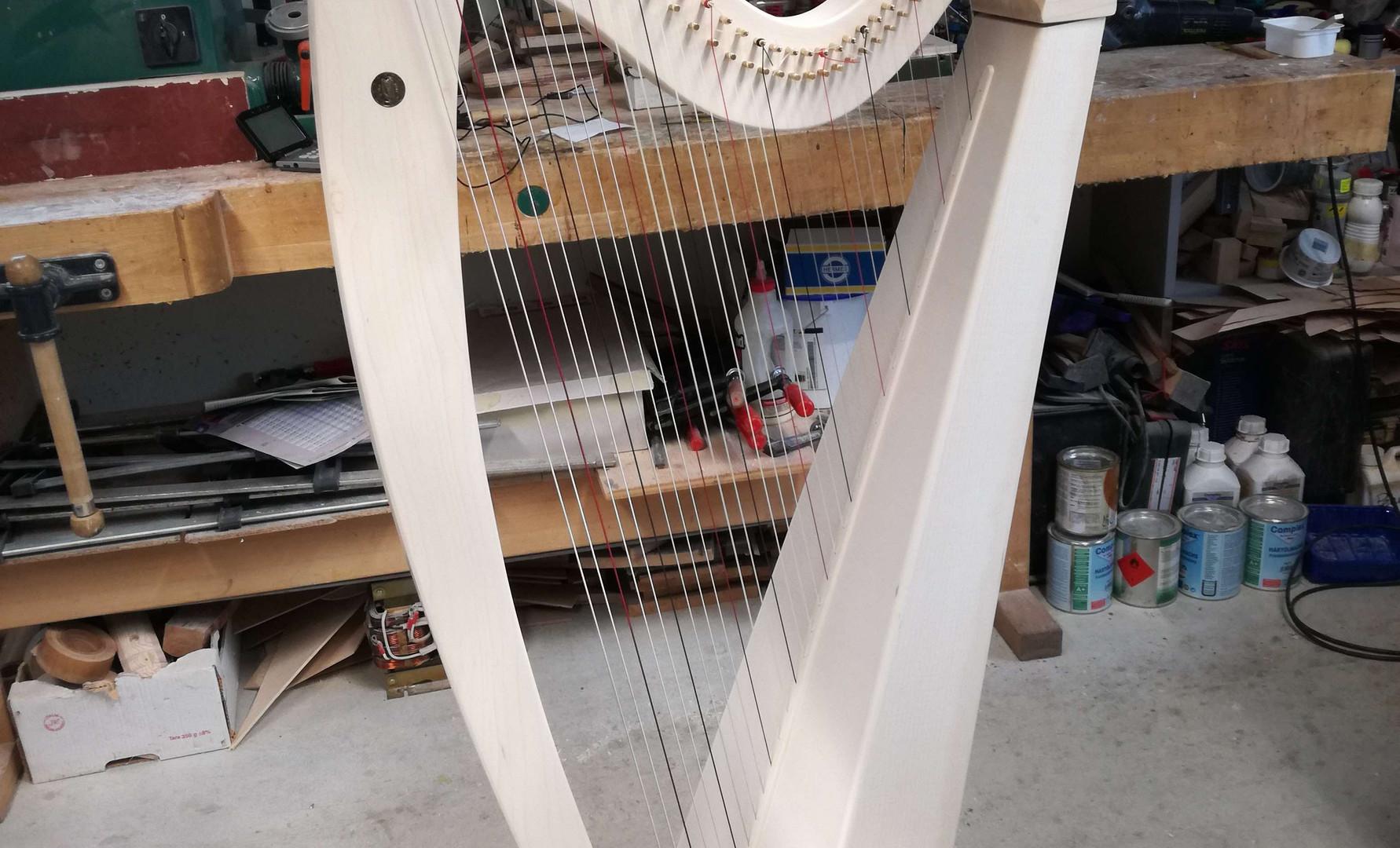 harfe3 Kopie.jpg