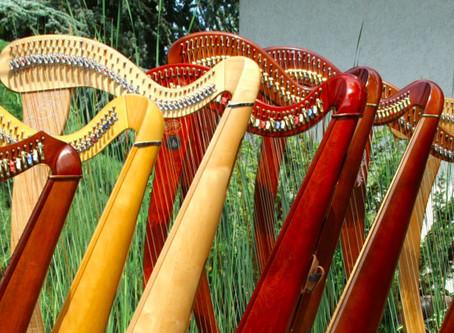 Doch lieber neue Harfe kaufen?