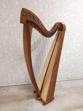 harfe1 Kopie.jpg