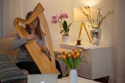 Harfenschüler zuhause üben