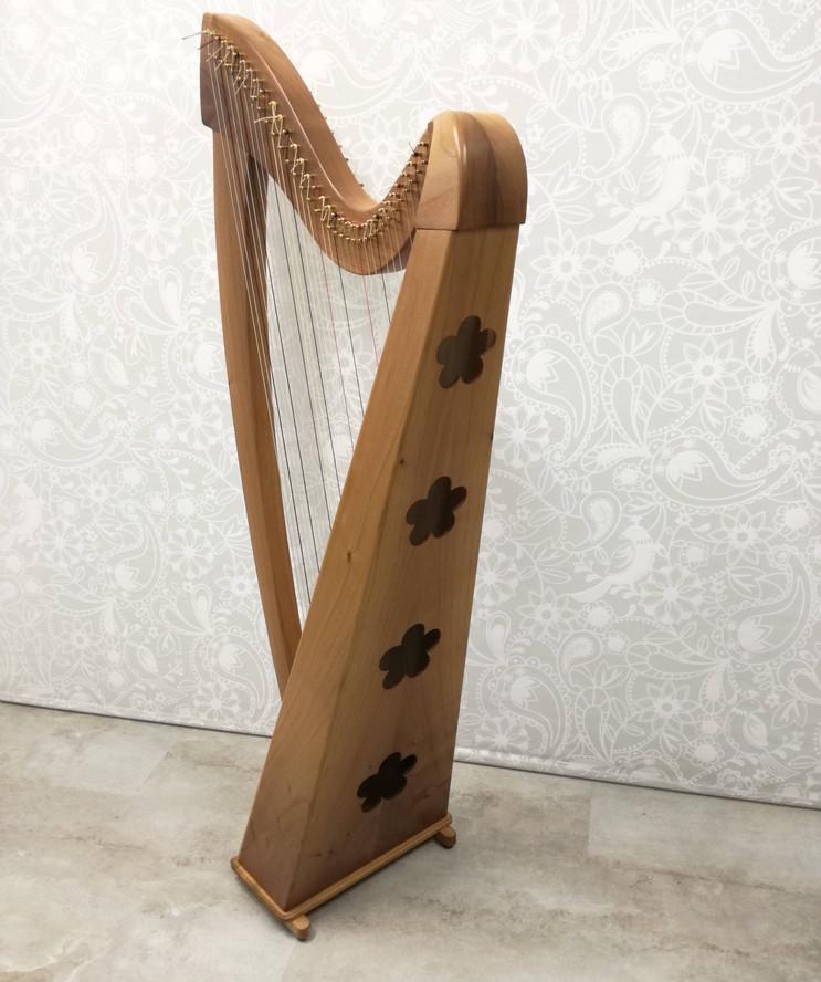 harfe2 Kopie.jpg