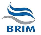 Brim54mm.jpg
