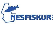 logo-nesfiskur-small.png
