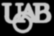 UAB logo vectoriel_edited.png