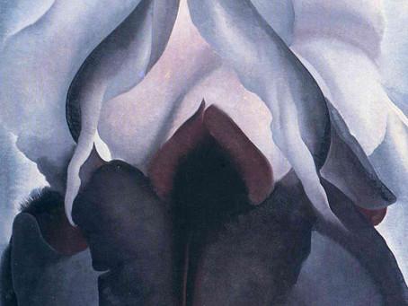 Quel fiore astratto e sensuale che sa di Femminile Primordiale