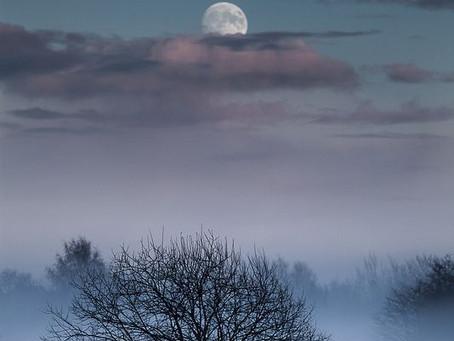 Luna di Dicembre: luna degli alberi spogli