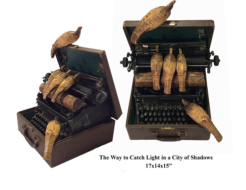 The Way to Catch Light in a City of Shad