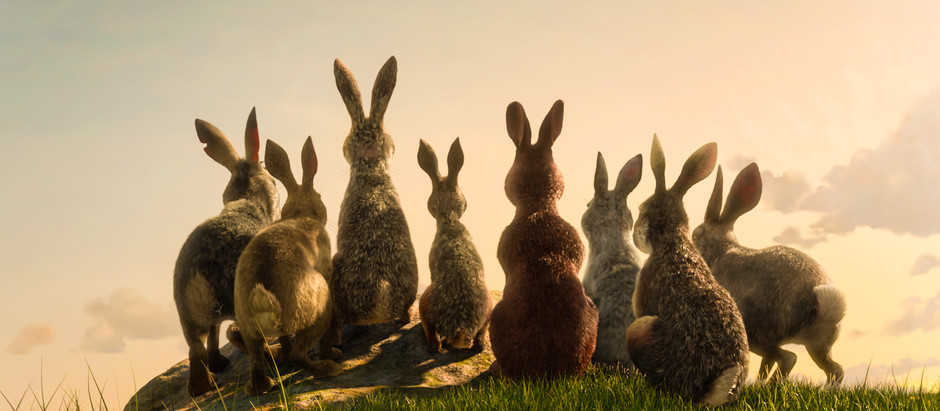 FIRST LOOK Watership Down