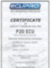 ECU PRO CERTIFICATE EXAMPLE.jpg