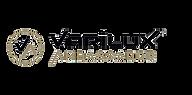 Logo Ambassador.png