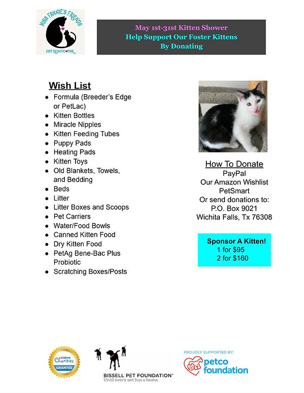 KittenShowerFlyer1.jpg
