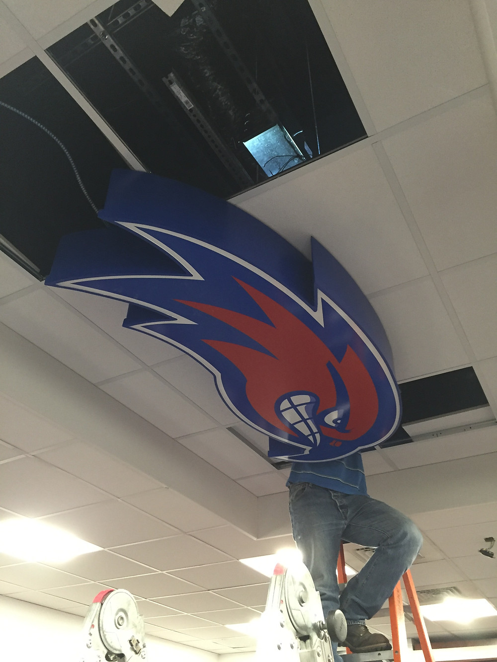 The Mass Logo River Hawk sign comes to life...