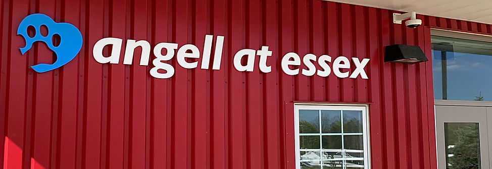 Angell Exterior Letters.jpg