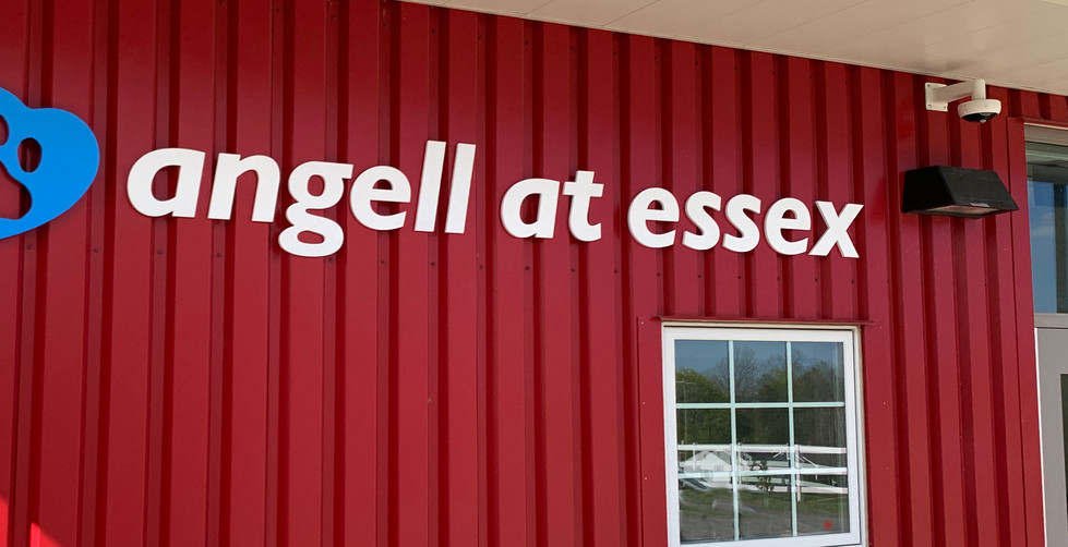Angell at Essex