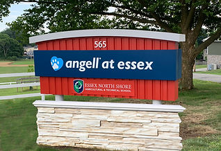Angell at Essex Sign.jpg