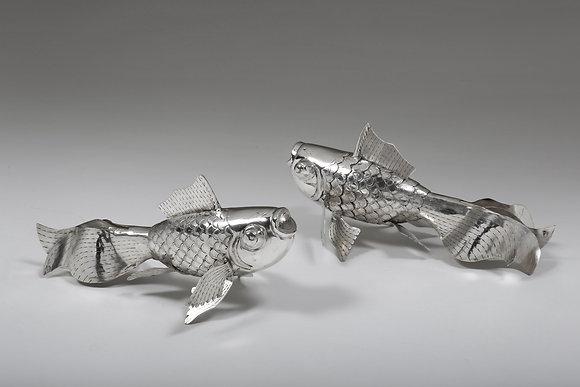 Silver Long Tail Fish